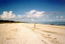 Bowman's Beach, Florida