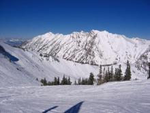 Alta, Utah - Mambo (blue off Collins)